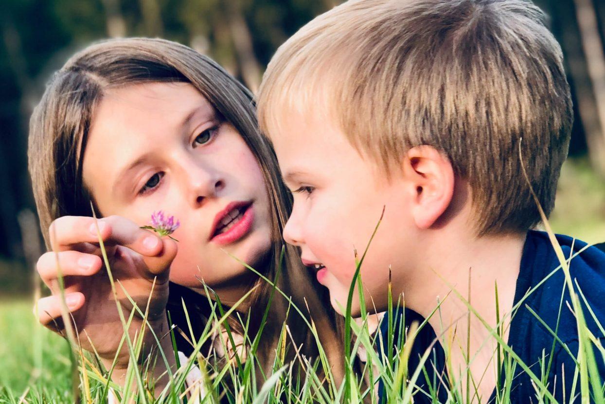 zwei Kinder an einer Blume riechend in der Wiese