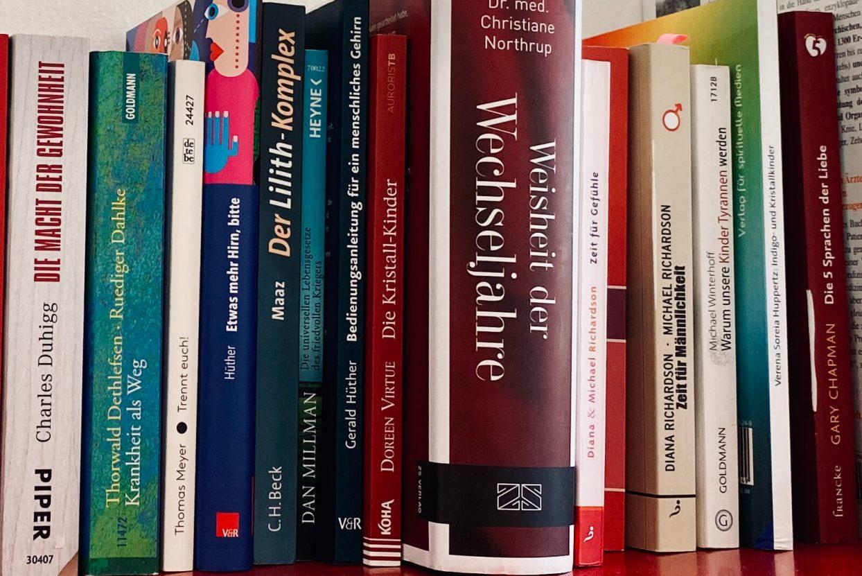 Bücherregal in der Praxis von Greenbrain. Auswahl an verschiedenster Literatur.